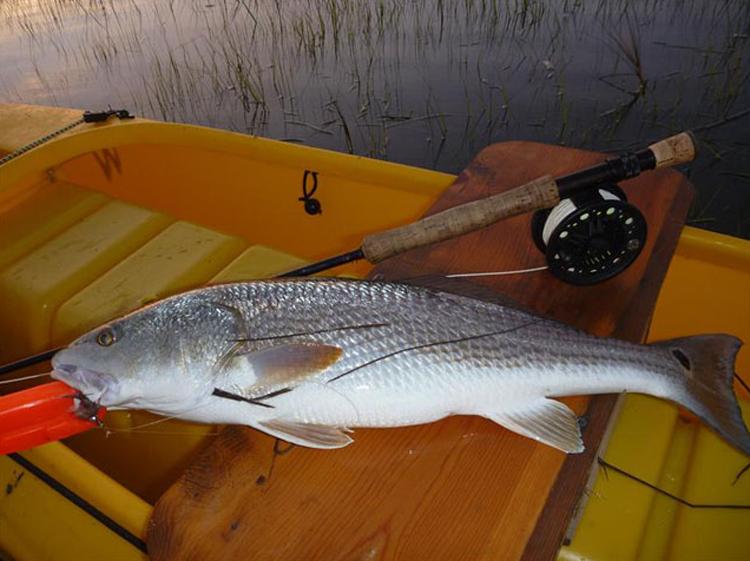 Tips & Tactics: Kayak fly fishing for redfish, poling flooding flats at nightfall