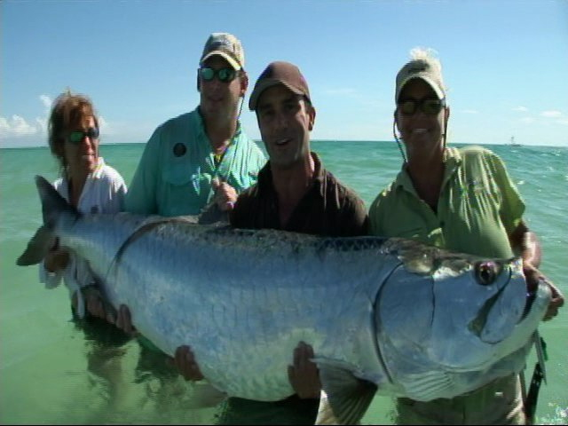 News: Tarpon may finally become catch and release only!