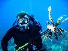 The Skipper Blog: Obsessed with lionfish? Yes!