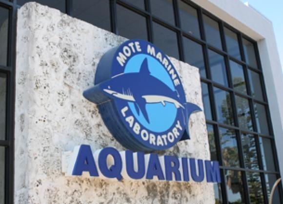 News: Laura Bush on hand for opening of Boca Grande Mote office