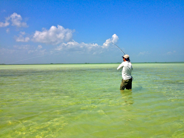 Feature: DIYing in the Yucatan proved harder than expected…