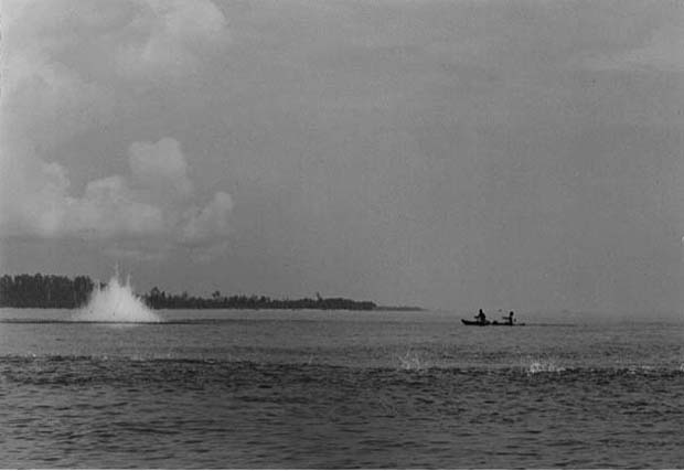Conservation: Bombing in the Mentawais
