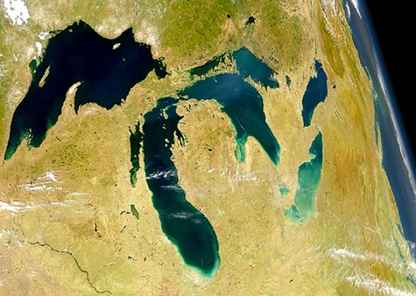 Conservation: Shedd Aquarium studies invasive fish species impacting the Great Lakes ecosystem