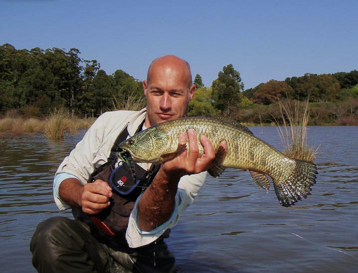 Video: Tararira, the Wolf Fish
