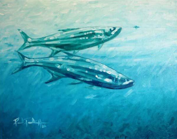 Friday Fish Frame: Paul Puckett
