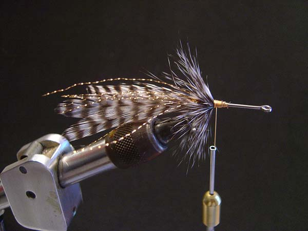 Step three:  This is what it should look like after the first hackle has been tied in and palmered. Notice that the palmer is angled towards the back of the hook. Tip > After each palmer, tie in the hackle as close together as you possibly can.
