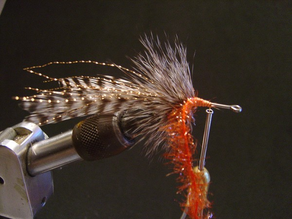 Step five: Tie in Orange Ice Chenille and palmer towards the eye of the hook and tie off.