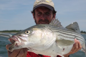 Captain Andrew Derr with a nice striper.