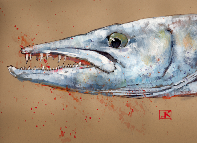 Friday Fish Frame: Barracuda