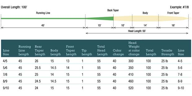 RIO switch fly line profile