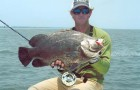 Tips & Tactics: About the wily and tasty tripletail
