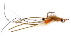 Peterson Spawning Shrimp. ORVIS photo.