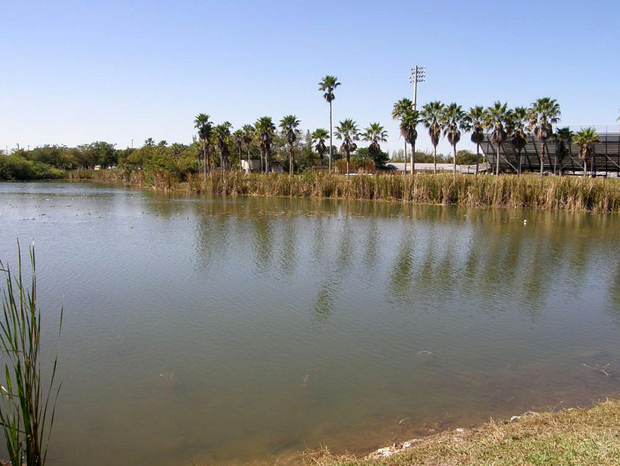 News: Improvements at Miami's Tropical Park benefits fish and anglers