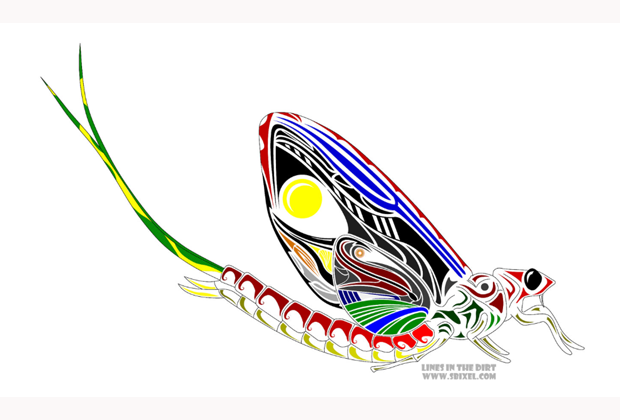 Friday Fish Frame: The Mayfly