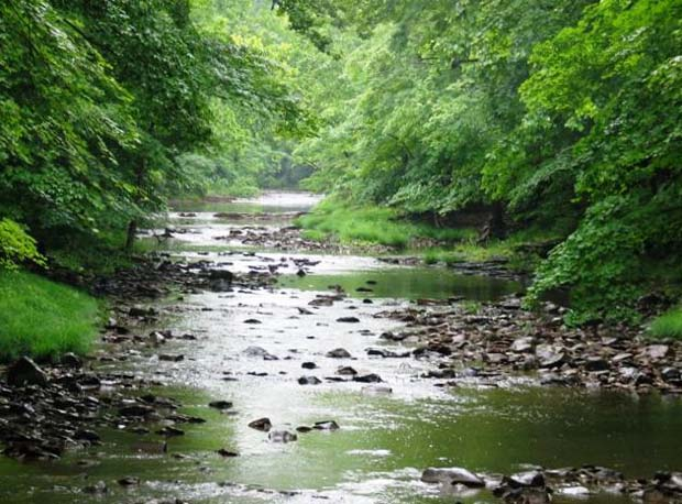 Conservation: EPA says 55% of U.S. rivers and streams in poor condition