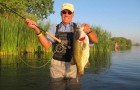 Tips & Tactics: Born again bassin'