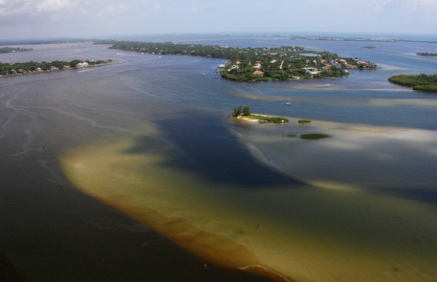 The face of toxic water released from Lake Okeechobee into the St, Lucie River in Flrorida