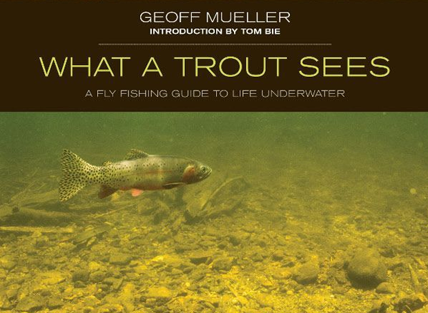 Book Review: What A Trout Sees by Geoff Mueller
