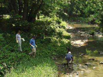 Researchers collect water samples for chemical analysis from the Gwynns Run tributary. Photo Credit: Steward T.A. Pickett, Baltimore Ecosystem Study LTER.