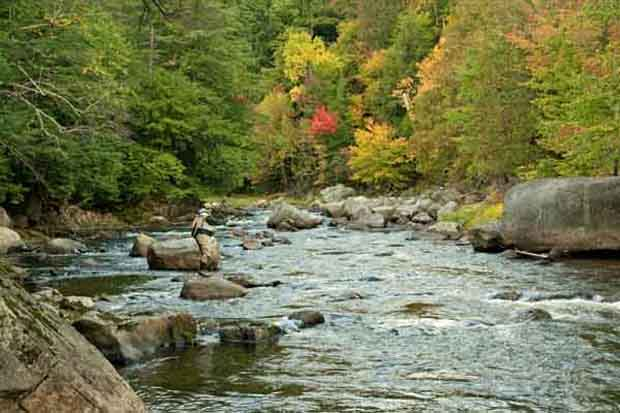 Conservation: Reconnecting Adirondack brook trout streams
