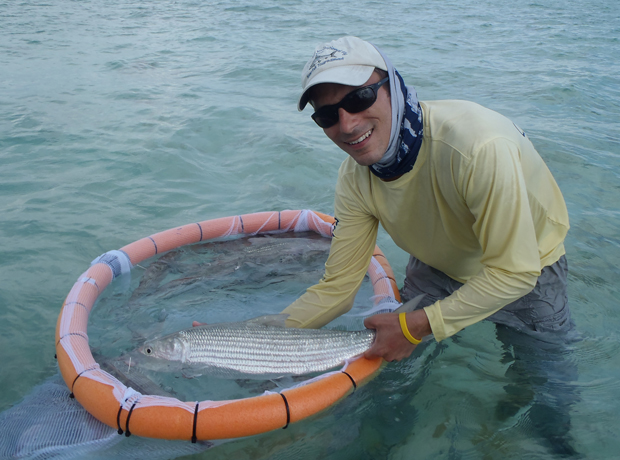 Bonefish & Tarponn Trust volunteer gets a nice bone for tagging and then releases.