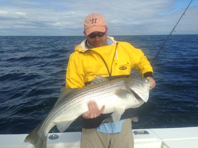 "Conservation: On the ubiquitous striped bass ""Slot Limit"""