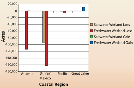 NOAA-Wetlands