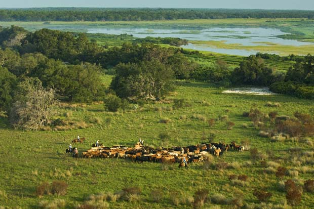 New Headwaters Wildlife Refuge and Conservation Area Will Help Sustain Ranching, Increase Hunting, Fishing Opportunities in Everglades. Photo Carlton Ward.