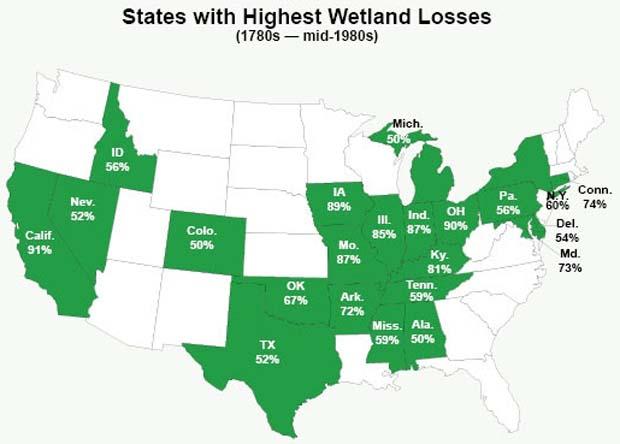 Conservation: $16.5 Million to conserve Coastal Wetlands