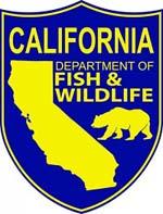SX-California-DFW