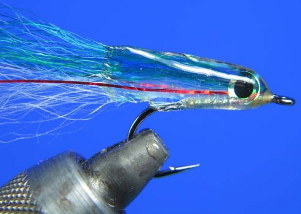 Anchovy albie fly.