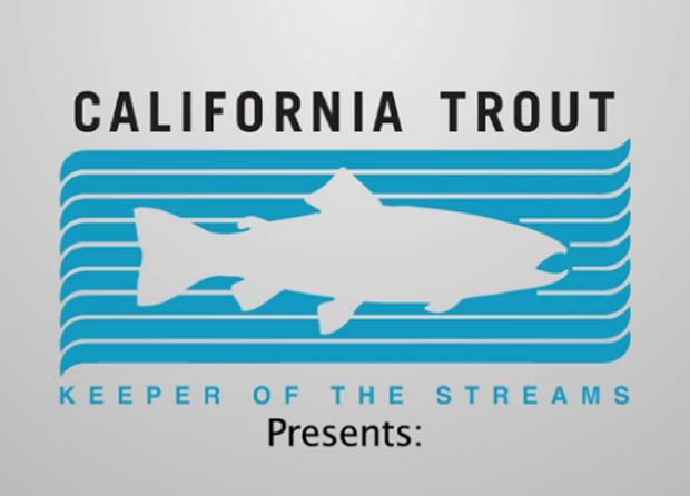 "Video: ""Southern California Steelhead: Against All Odds"""