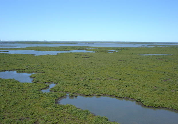 """News: Is """"fracking"""" in the Everglades a real possibility?"""