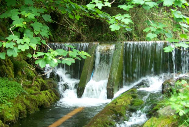 News: Sustainable Hydropower? Maybe not.