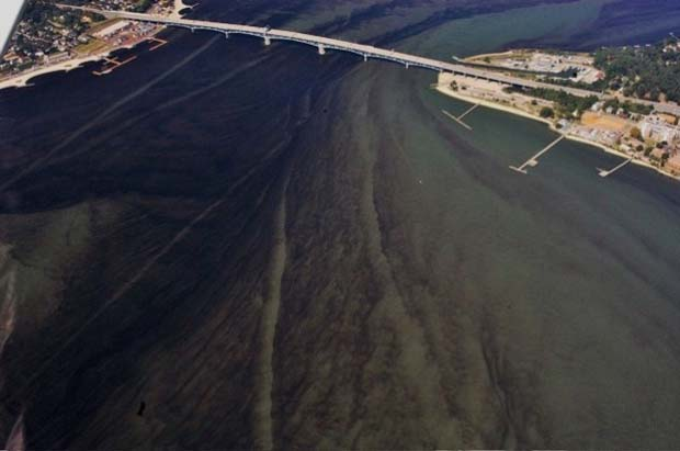 Conservation: Farm sourced pollution has it's supporters – big AG
