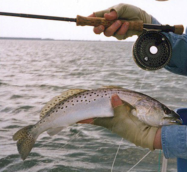 Image credit Fly Fishing Discounters.