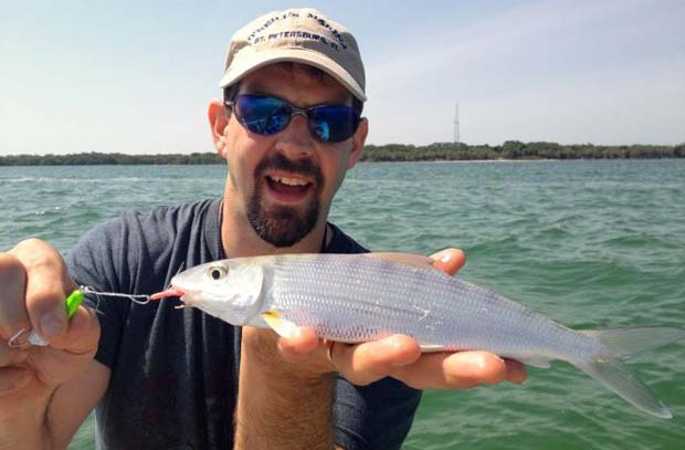 Of Interest: Bonefish caught In Tampa Bay, FL area