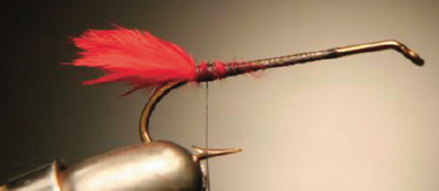 Step 1: Wind thread over rear two-thirds of the hook shank (leave forward third bare for hair spinning). Tie in tuft of red hackle fluff at the hook bend.