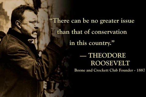 teddy_quote