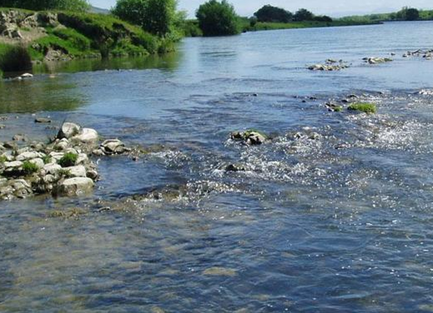News: Goverment pest control putting NZ streams at risk?