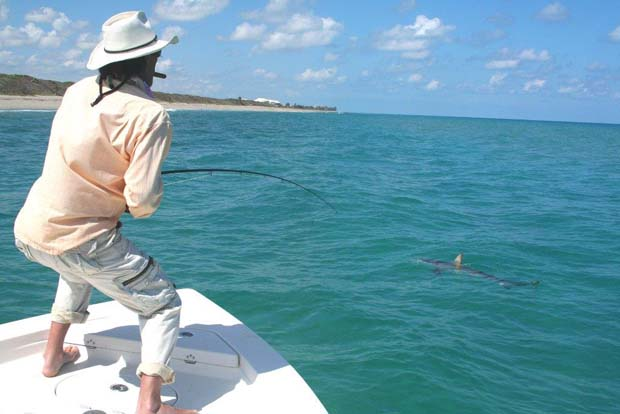 """There's a lesson here. Andy Mill, author of """"A Passion For Tarpon,"""" uses the butt end of the rod and his legs to shorten the fight. Most anglers, fly or spin, use the tip to lift by high-sticking and twisting their bodies - lengthening the fight and imperilling the fish. Photo by Steve Kantner."""