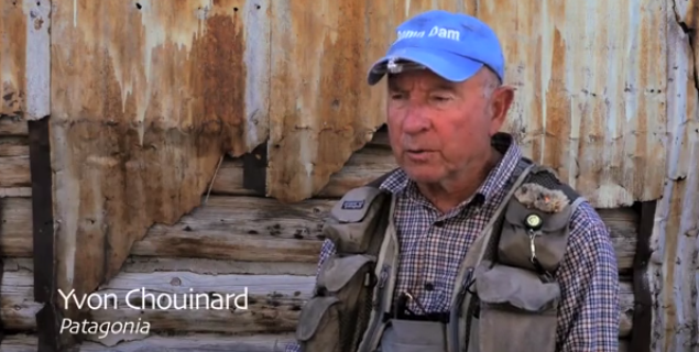 Video: A touch of reality regarding cold water fisheries