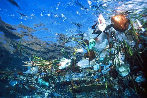 The Pacific Garbage Patch  is estimated to be larger than Texas, but its boundaries constantly shift due to currents and win. In addition, plastic particles the size of a pin-head are constantly being ingested - killing fish as big as a whale.