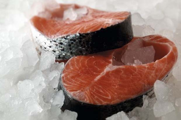 Science: The first genetically engineered fish is here, but is that good?