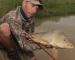 Video Roundup: Bonefish Frenzy, Fish Head, Carp on Dry Fly
