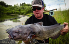 "Feature: Catfish are the ""cat's meow"""