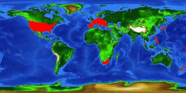 World distribution map for the largemouth bass (including introductions). Image credit