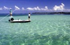 Bonefish & Tarpon Trust: Conservation Guide for March – Dave Wyss