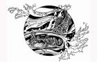 Friday Fish Frame: Andrej  Krysov