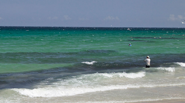 Huge schools of baitfish once blanketed the surf. Is what anglers are reporting just a hiatus? Pat Ford photo.